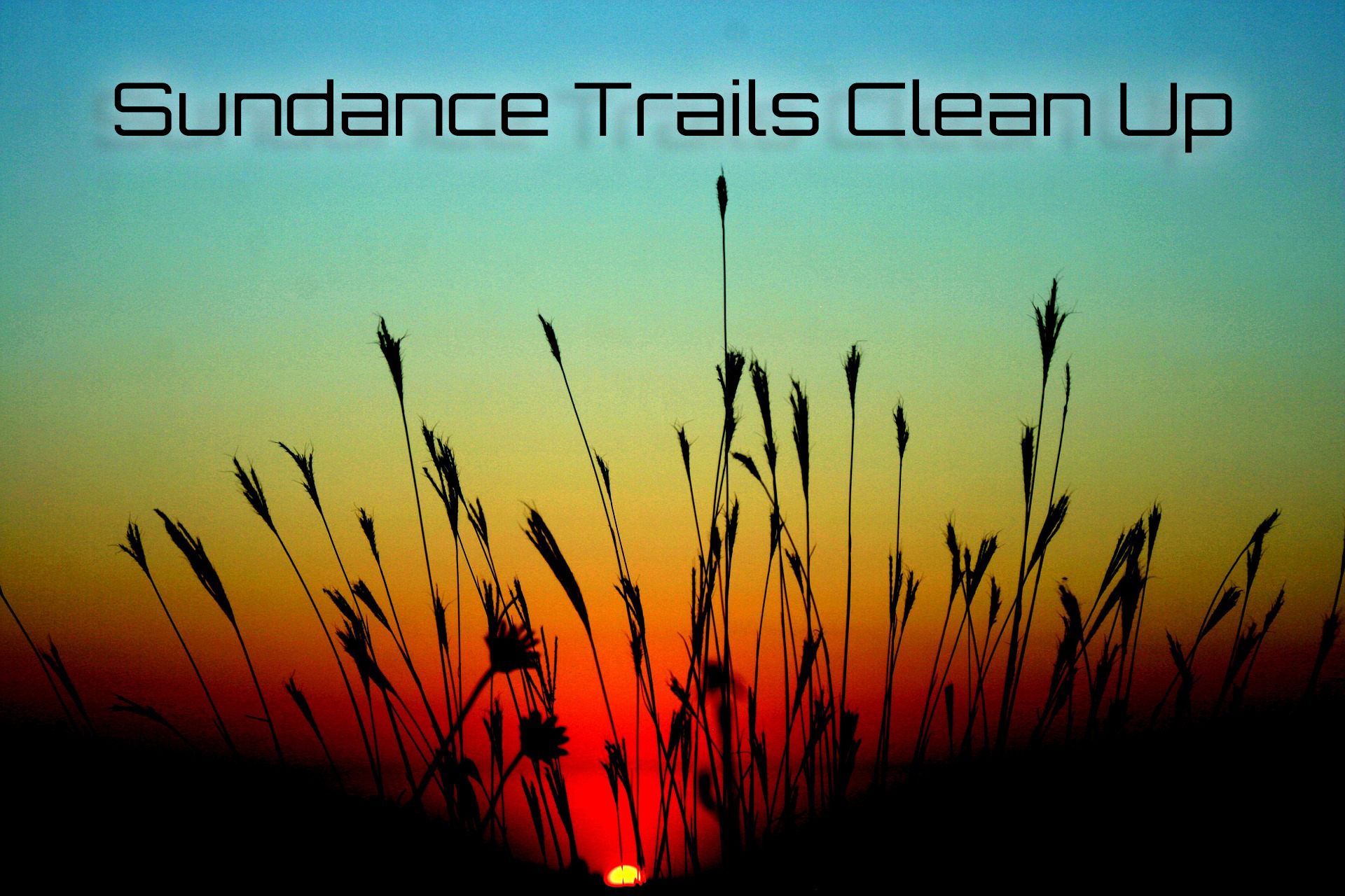 Trails Clean Up August 2015